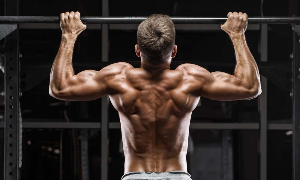 Best Back Exercises for Back Muscles