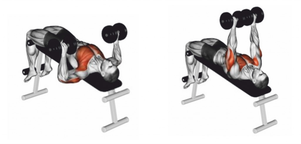 Declined Dumbbell Press