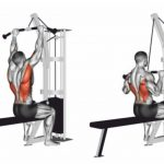 Overhand Grip Lat Pull Down